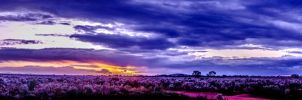 HDR Sunset 2 by itilispeer