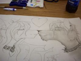 new project in Drawing class by axlfox
