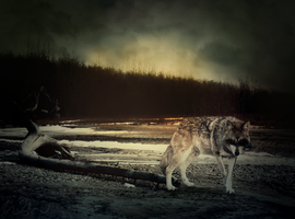 AT: Darkness by Wiithout