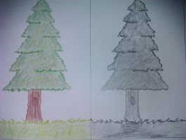 Trees   A4 by jakanddaxter1998
