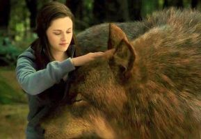 Bella patting Jacob by Flana-the-wolf