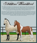 Stahlern Warmblood Breed Sheet by dyatori