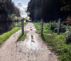 Puddles and Bollards by TheBigDaveC