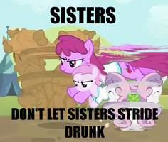 A Pony Service Announcement... by Gottvich