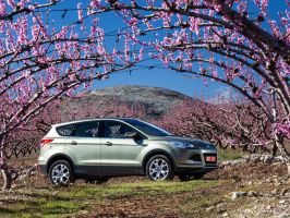 Ford Kuga by Bambr