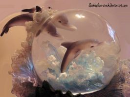 dolphins 2 by Saikochan-Stock