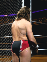 Daniel Bryan 2: March 7th/2014 by Crystal-Cat