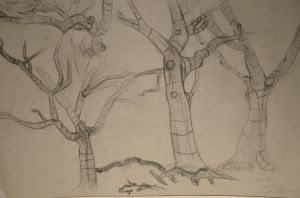 Tree Sketches by Dioxim
