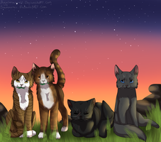 COLLAB: *The ThunderClan Medicine Cat ladies* by Samooraii