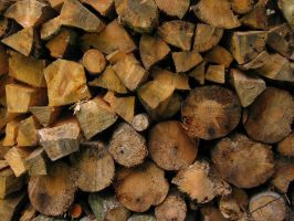 Wood Pile by idolminds
