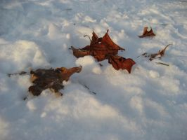 leafleft by facethecookie