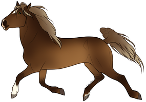 Horse Adoptable: Spanish Barb - SOLD by Cat-Orb-Shop