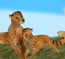 .Cheetahs. by Mustang-Heart