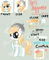 The Official Reference Sheet (: by GeekPony