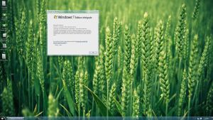 Windows 7 SP1 RTM by Spyrow
