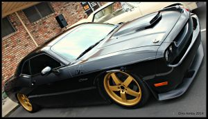 Challenger T/A- R/T by StallionDesigns