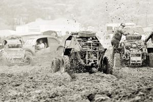 Mud, mud and a little bit more mud III by luca1984