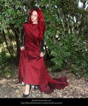 Rose Red16 by faestock