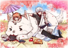 Cherry Blossom Picnic -Gintama by jinyjin