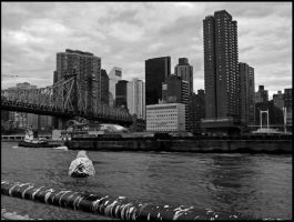 The View From Roosevelt Island by Neutral-Gear