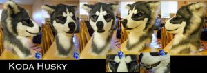Koda Husky for sale by Sharpe19