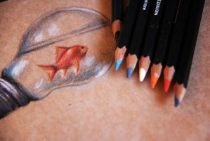 sketching - goldfish I, 2014 - Silvia C. by phys-e
