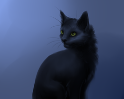 Black Cat by DiN-the-Painter