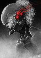 Raiden MGS4 by Ry-Spirit