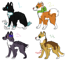 DOGE ADOPTABLES [closed] by AccioAltias