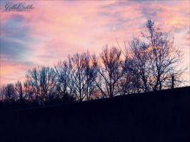 Pink Sky. by GoldenCadillac