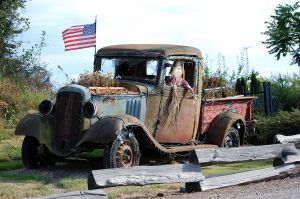 Old truck by ShannonCPhotography