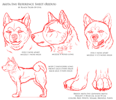 Akita Inu Reference Sheet Redux by Black-Tiger-of-Evil