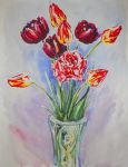 Tulips by ptichkaG