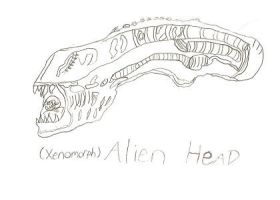 Xenomorph - Alien Head Sketch by ReturningDragon