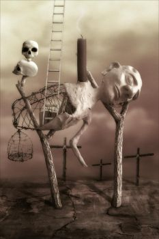 A Ladder to the Sky by apocryph