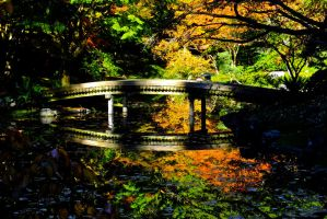 Japanese Bridge by WestSideofMidnight