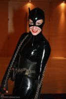 Catwoman 2 by Insane-Pencil