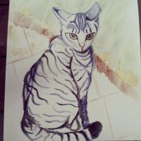 The Cat that Caught my Heart - WIP by MuArtGL