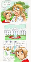 the White House by jawazcript