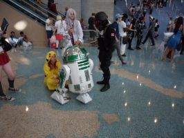 Anime Expo R2-D2 by DelphiniumFleur