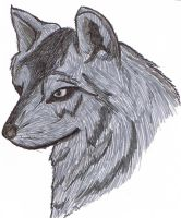 Wolf all marker- no pencil by jashinist112