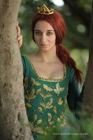 Princess Fiona Cosplay 5 by ASCosplay