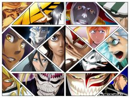 Bleach - Montage 006 by T-Metalskull