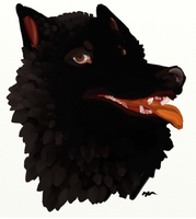 The Black wolf by Nuuuk