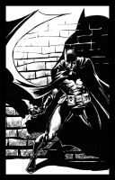 Batman : Twart by stokesbook