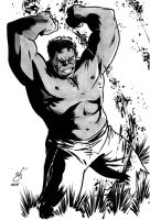 Gray Hulk - DSC by gph-artist