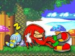 +-+ Knuckles and Chao 'Laxin by Kojichan