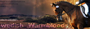 Swedish Warmblood banner by PS-Graphics