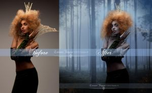 Before and After Queen of the Forest by LevanaTempest