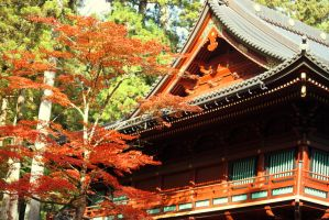 Toshogu Shrine 1 by firenze-design